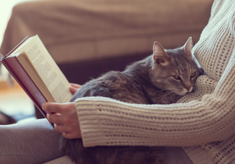 A woman reading a book on her sofa with a cat on her lap