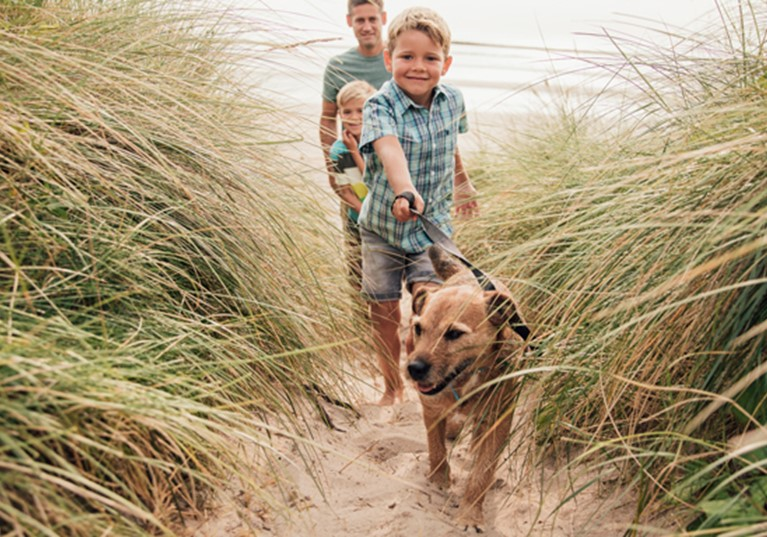 A young boy walking a dog on a lead with his family on a sandy beach