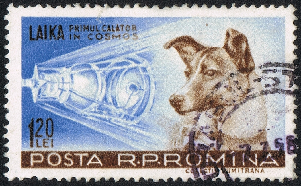 A stamp depicting Laika, the first dog in space