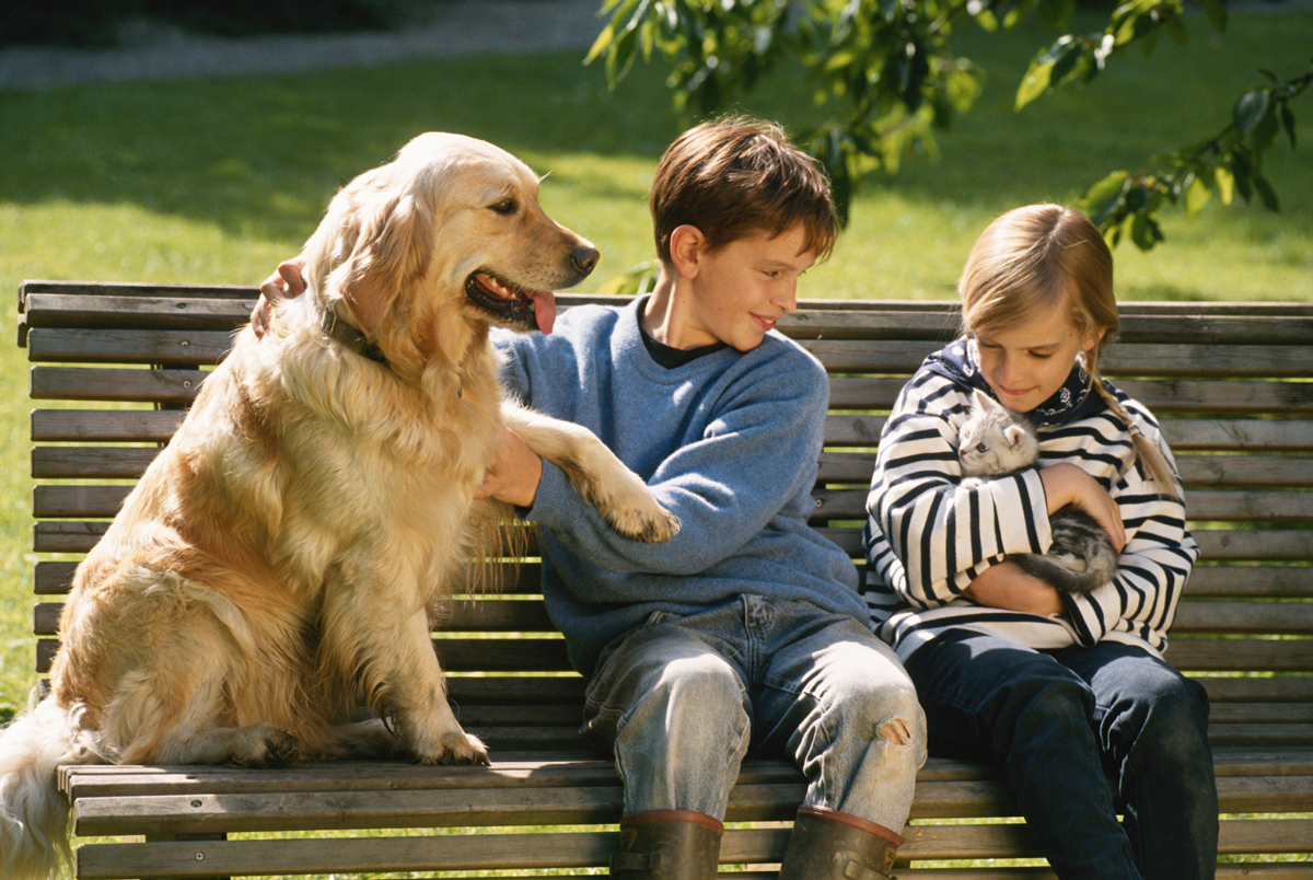 A Golden Retriever sitting on a park bench with 2 young children