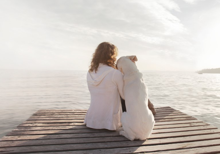 A woman and her dog sitting on a jetty looking out to sea leaning on eachother