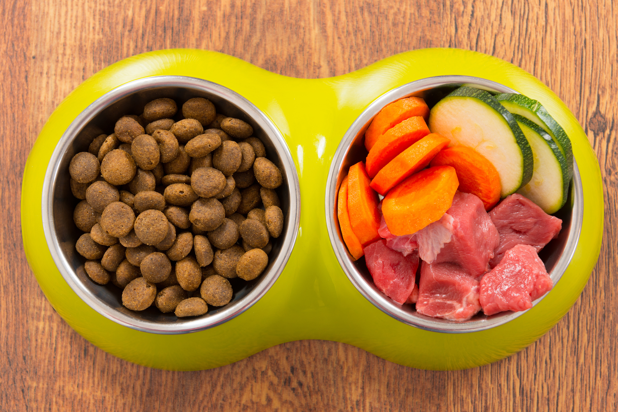 Two dog food bowls, one with kibble and the other containing raw meat and vegetables