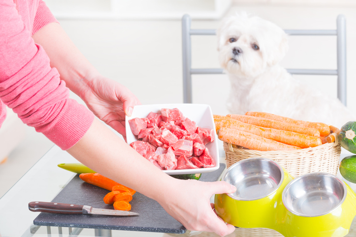 A dog sitting at a table with its owner preparing various foods