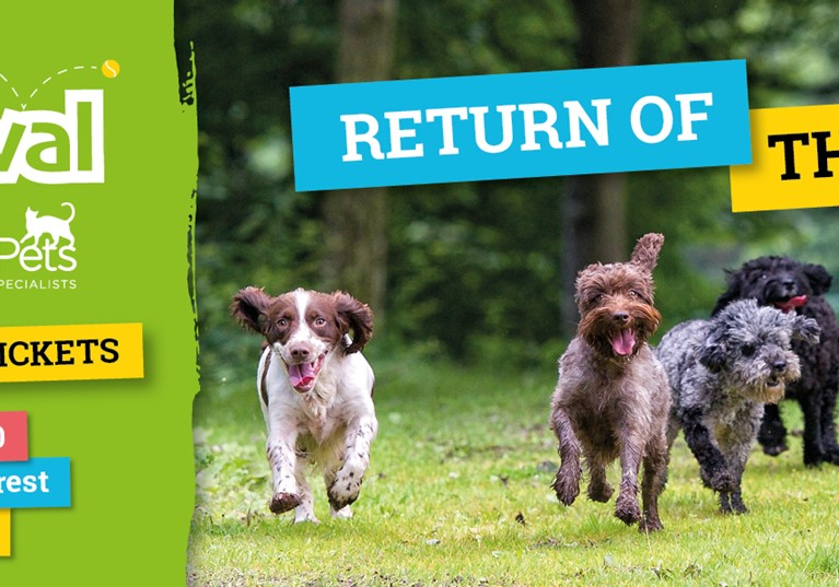 DOGSTIVAL – NEW FOREST FESTIVAL FOR DOGS & DOG-LOVERS IS ALL PAWS GO FOR SEPTEMBER